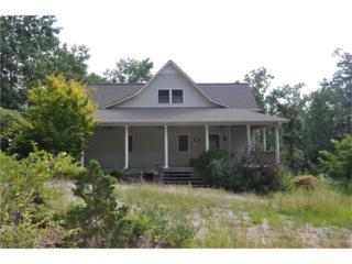785 Amicalola Woods Road, Dawsonville, GA 30534 (MLS #5744545) :: North Atlanta Home Team