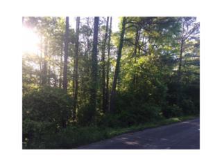 00 Sunrise Terrace SE, Calhoun, GA 30701 (MLS #5744597) :: North Atlanta Home Team
