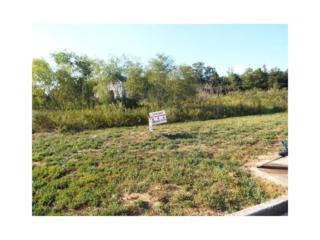 0 Susie Creek Lane, Villa Rica, GA 30180 (MLS #5747067) :: North Atlanta Home Team