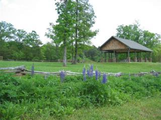 Lot 14 Fern Park Drive, Dawsonville, GA 30534 (MLS #5748030) :: North Atlanta Home Team