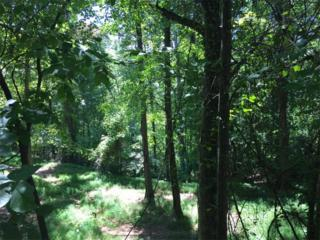 LOT 20 Pine Forest Circle, Gainesville, GA 30504 (MLS #5749099) :: North Atlanta Home Team