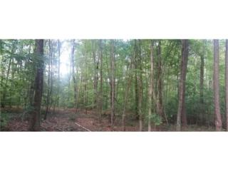 Lot 94 Iron Mountain Road, Canton, GA 30115 (MLS #5751677) :: North Atlanta Home Team