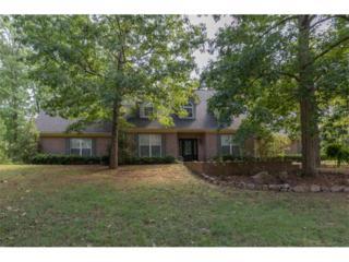 35 White Laurel Lane, Covington, GA 30016 (MLS #5752023) :: North Atlanta Home Team