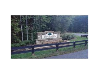 355 Windy Ridge Drive, Dawsonville, GA 30534 (MLS #5752544) :: North Atlanta Home Team