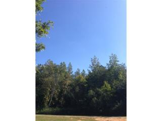 1704 Oak Bend Drive, Gainesville, GA 30501 (MLS #5753140) :: North Atlanta Home Team