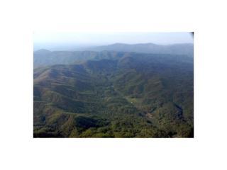 23 Utana Bluffs Trail, Ellijay, GA 30540 (MLS #5757019) :: North Atlanta Home Team