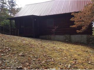 128 Teaberry Ridge Road, Talking Rock, GA 30175 (MLS #5765149) :: North Atlanta Home Team