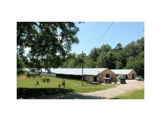 260 Old Silver Mine Road, Mccaysville, GA 30555 (MLS #5766459) :: North Atlanta Home Team