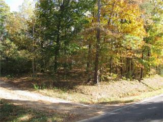 887 Sumach Church Road, Chatsworth, GA 30705 (MLS #5768140) :: North Atlanta Home Team