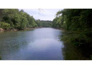 480 Overlook Mountain Lot 8 Drive, Suwanee, GA 30024 (MLS #5769506) :: North Atlanta Home Team