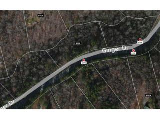 Lot 67 Ginger Drive, Jasper, GA 30143 (MLS #5771266) :: North Atlanta Home Team