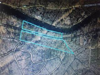 0000 Cascade Trail, Blue Ridge, GA 30513 (MLS #5776973) :: North Atlanta Home Team