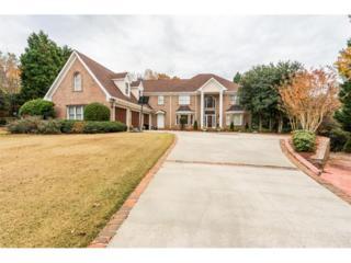 157 Glen Eagle Way, Mcdonough, GA 30253 (MLS #5778097) :: North Atlanta Home Team