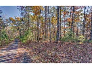 Lot 11 Meadowlands Drive, Talking Rock, GA 30175 (MLS #5779583) :: North Atlanta Home Team