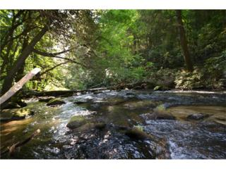 Lot 7 Mountain Falls Overlook, Ellijay, GA 30540 (MLS #5779765) :: North Atlanta Home Team