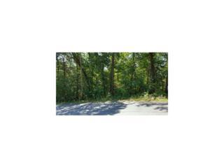 0 Apache Trail, Gainesville, GA 30506 (MLS #5781017) :: North Atlanta Home Team