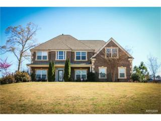 4082 Rotterdam Pass, Hampton, GA 30228 (MLS #5781837) :: North Atlanta Home Team