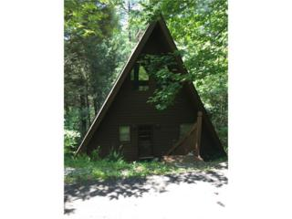 166 Red Oak Lane, Clarkesville, GA 30523 (MLS #5782540) :: North Atlanta Home Team