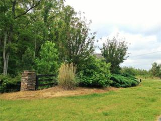 Lot 9 Heritage Creek Trail, Ball Ground, GA 30107 (MLS #5786749) :: North Atlanta Home Team