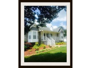 359 Old Lexington Pass, Villa Rica, GA 30180 (MLS #5788579) :: North Atlanta Home Team