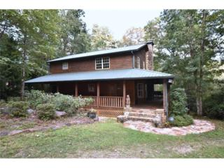 97 Delta Lane, Cleveland, GA 30528 (MLS #5788956) :: North Atlanta Home Team