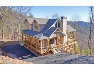 193 Summit Pass, Chatsworth, GA 30705 (MLS #5790106) :: North Atlanta Home Team