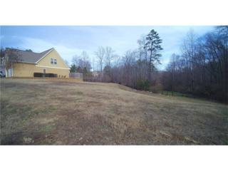 1706 Sawgrass Cove, Gainesville, GA 30501 (MLS #5792277) :: North Atlanta Home Team