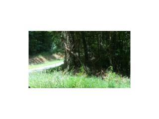 00 Archie Ross Road, Flovilla, GA 30216 (MLS #5794954) :: North Atlanta Home Team