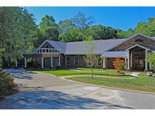 316 Holsenbeck School Road, Winder, GA 30680 (MLS #5796042) :: North Atlanta Home Team