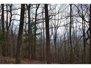 Lot249 Owl Ridge Way, Jasper, GA 30143 (MLS #5796216) :: North Atlanta Home Team