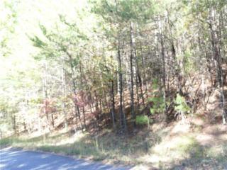 0 High Shoals Drive, Dahlonega, GA 30533 (MLS #5796962) :: North Atlanta Home Team