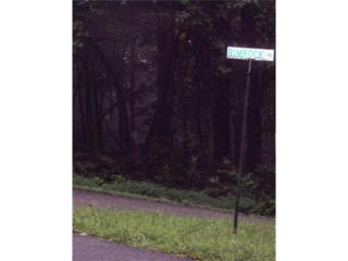 LOT 56 Rimrock Road, Jasper, GA 30143 (MLS #5797816) :: North Atlanta Home Team