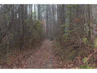 00 Hood Road, Jasper, GA 30143 (MLS #5799143) :: North Atlanta Home Team