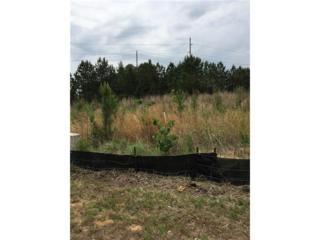 235 Castleberry Industrial Drive, Cumming, GA 30040 (MLS #5799905) :: North Atlanta Home Team