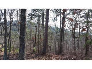 19 Signal Mountain Drive, Cartersville, GA 30121 (MLS #5801230) :: North Atlanta Home Team