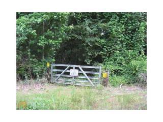 0 Sunset Drive, Locust Grove, GA 30248 (MLS #5802066) :: North Atlanta Home Team