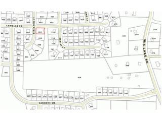 452 Camella Circle, Mcdonough, GA 30252 (MLS #5802396) :: North Atlanta Home Team