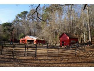 4317 Hearn Road, Ellenwood, GA 30294 (MLS #5802818) :: North Atlanta Home Team