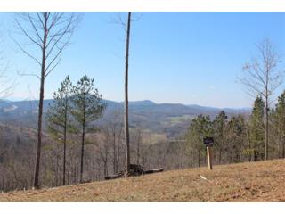 Lot355 The Thirteen Hundred, Blairsville, GA 30512 (MLS #5804978) :: North Atlanta Home Team