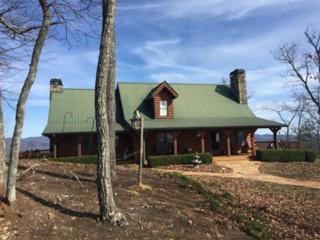 355 Ranch Mountain Drive, Dahlonega, GA 30533 (MLS #5805537) :: North Atlanta Home Team