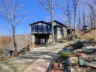 166 Mountain Springs Way, Jasper, GA 30143 (MLS #5806001) :: North Atlanta Home Team