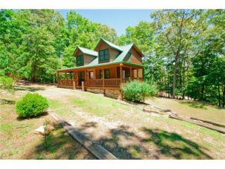 538 Water Oak Drive, Ellijay, GA 30540 (MLS #5807080) :: North Atlanta Home Team
