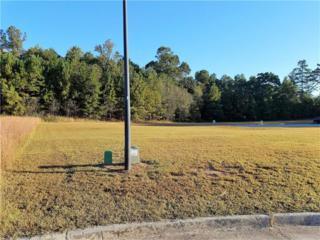 101 N Bay View Drive, Villa Rica, GA 30180 (MLS #5807187) :: North Atlanta Home Team