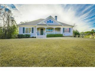 131 Silver Creek Drive, Canton, GA 30114 (MLS #5807701) :: Path & Post Real Estate