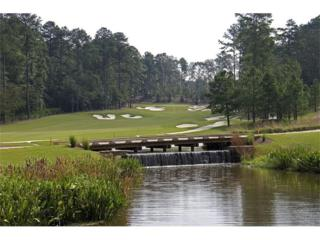 4835 Kettle River Point, Suwanee, GA 30024 (MLS #5808085) :: North Atlanta Home Team