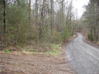 0 Long Branch Road, Ranger, GA 30734 (MLS #5808514) :: North Atlanta Home Team