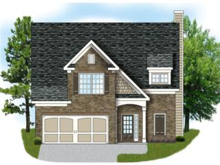 575 Amaranth Trail, Hoschton, GA 30548 (MLS #5810497) :: North Atlanta Home Team