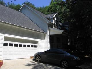 1223 Goat Neck Road, Cleveland, GA 30528 (MLS #5810578) :: North Atlanta Home Team