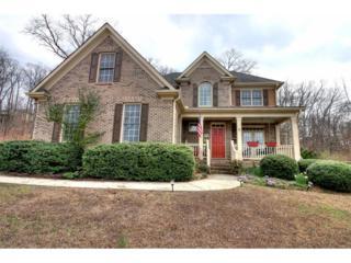 8 Mossy Rock Lane, Cartersville, GA 30120 (MLS #5812022) :: North Atlanta Home Team