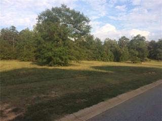 165 Cannon Creek, Homer, GA 30547 (MLS #5813009) :: North Atlanta Home Team